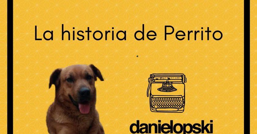 La historia de Perrito